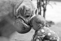 Kids cuteness <3  / by Jennifer MacKinnon
