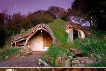 Eco home / by Rachel Underwood