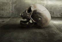 Skulls / by Nocturnal Alley