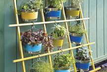 GARDEN UP VERTICAL / It's difficult to think anything but pleasant thoughts while eating a homegrown tomato. ~Lewis Grizzard / by Linda Luttrell