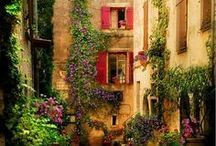 Gardening & Beautiful Outdoor Spaces / by ★ Elise
