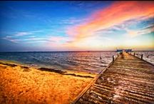 AMI Piers / by Anna Maria Island Resorts