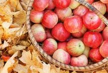 automne et fruits / ambiance / by nanou leroy