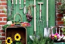garden tips / by barbara huston