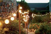 gardenologie / by Rorie Brennan