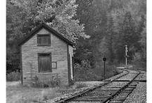 Black&White Photos / by Darla Rigdon