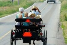 Amish Life / by Darla Rigdon