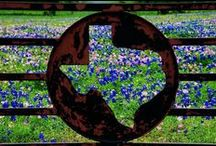 Travel - Texas / by Kathleen Kelly