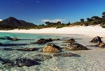 Travel - Tasmania / Photos from beautiful, beautiful Tasmania Australia. I am one of the lucky souls who lives here. yay!  / by Kathleen Kelly