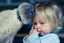 Lovin' Animals / Please pin (or 'like') only 10 - 15 of my pins per day - thank you / by Connie Lee