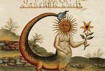 Illuminated Manuscripts / by Rene Wanner