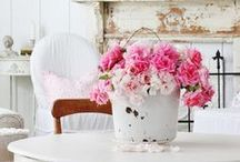 Home decor / by Laurie Licon