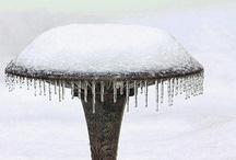Winter / by Debbie W