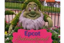 Disney World!  / Tips, tricks, and attractions from The Most Magical Place on Earth! / by Kelly Stilwell