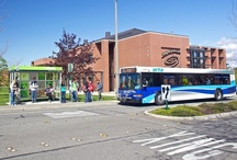Campus Life / by Whatcom Community College