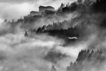 Misty / by Chun