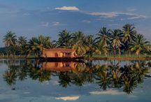 Gods Own Country/ Kerala <3 / by Chrystie J