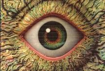 Eye Candy / Blotter art fractal / by Nate Nichols