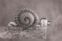 Adorable Baby Pictures / Ann Geddes / by MzDLyn