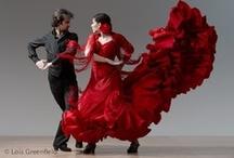 Flamenco / by Danielle Asenjo Canella