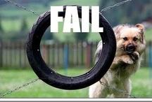 LOL Fails / For all those LOL fail moments. / by I'm LOL