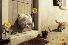Createspirational   ADS   Promo / Ad campaigns and creatively sick promos / by BETTY CHIN-WU