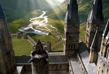 Hogwarts & Harry Potter Set / by karin