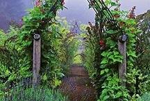 veggie garden / by The Stencil Library