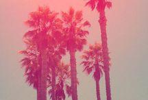 California mood board / #Sea, #sun & #beach in #California, #surf, #Los Angeles, #palmtrees, #San Francisco / by Fan TingTing