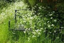 flower garden stuff / by lillian mcfarland