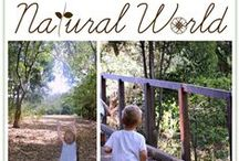 Outdoor Play / by Amy - Wildflower Ramblings