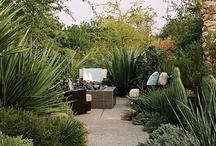 Garden & Patio / by Oriana Wilson