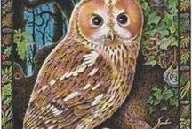 Divination Decks / Tarot, guidance, healing and inspiration cards... and beautiful art / by Deena Banks