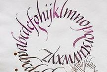 Calligraphy - Curves  / Calligraphy / by Paula Fricke