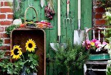 gardening / by Dianne