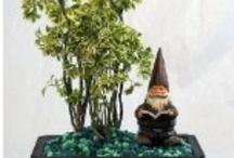 Garden Gnomes / by grace dukes