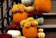 Autumn / by Nancy Bull
