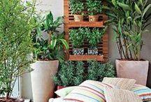 Terrace / Garden ideas / by Sofie Zeeuwts