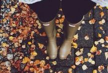 Leaves are changin'  / One of the best times of the year, football season, thanksgiving, leaves change, you can wear hoodies, & halloween  / by Annamarie Ross