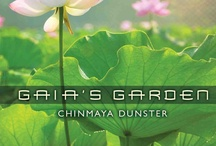 Chinmaya Dunster / by New Earth Records