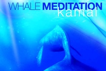 """Kamal / A German native, Kamal now lives in Australia where he not only works on his own music, but also works as a sound engineer and producer. He was recently awarded the prestigious Dolphin Award for the Best New Age / Ambient Song for his """"Enchanted World"""" from Reiki Whale Song. / by New Earth Records"""