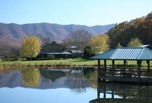 Day Trips around Roanoke / by Angela Arrington, Prudential Premier REALTORS