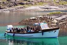 Skye & Lochalsh Boat Trips and Tours  / enjoy our word-class wildlife and marine environment at www.skye.co.uk,  the official tourism website for this destination. / by Skye & Lochalsh Marketing Ltd
