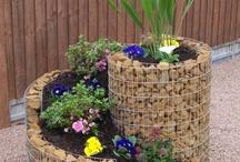Garden Ideas / by Barry Okner