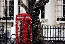 O the Holidays! / by Courtney Kaliher