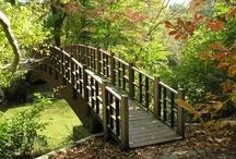 Bridges / by Barbara Alfonso