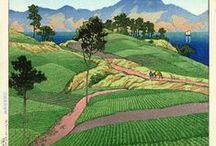 Japanese Art 2 / by Greg Speck
