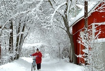 Blissfully Snowed In / All things beautiful and snowy. / by Kada Walden