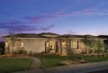 Builder of the Month - T.W. Lewis by David Weekley Homes / August's Builder of the Month is T.W.Lewis by David Weekley Homes!  http://estrella.com/homefinder/builders/tw-lewis-by-david-weekley-homes/ / by Estrella