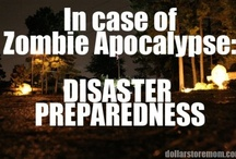 Just in Case... It could happen... ZOMBIES!!! / by Kim Johns